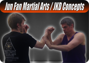 adult martial arts Jun Fan / JKD